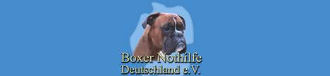 www.boxernothilfe.de