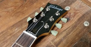 Thorsten Schlueter - MLP_37_Headstock_Detail