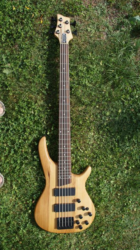 Ziemlich Verkabelung Bassgitarre Zeitgenössisch - Elektrische ...