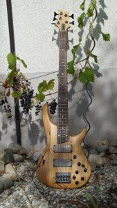 5-saiter-bass-uwe-beger-03-bass-3