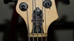 5-saiter-bass-uwe-beger-07-kopf-2