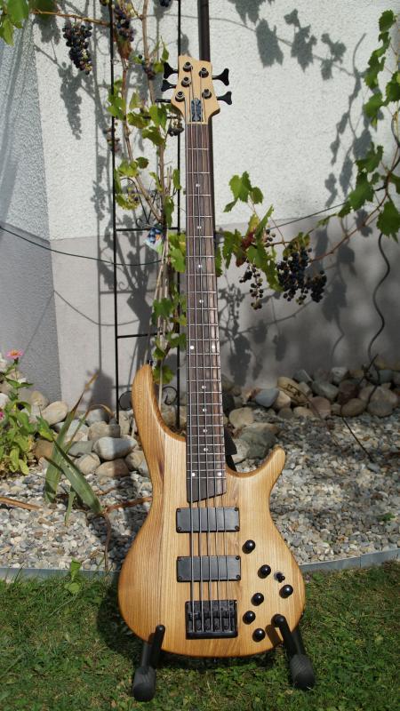 Tolle Bassgitarre Schaltung Fotos - Die Besten Elektrischen ...