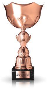 Contest 2019 Bronze