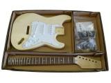 E-Gitarren-Bausatz/Guitar Kit Style I