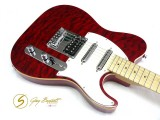 E-Gitarre Samick Greg Bennett FA 2