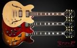 E-Gitarre Spear RD-BLUES CS, wiegt nur 2,7kg!