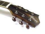 Travel-Guitar / Reise-Gitarre Spear SP 70P 2. Wahl