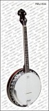Banjo Richwood Deluxe 4-saitig
